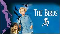 The BIRD-鳥-