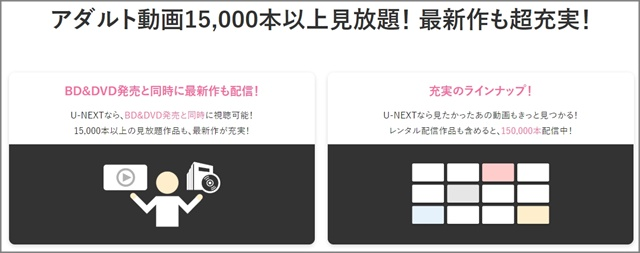 U-NEXTの見放題アダルト動画の数
